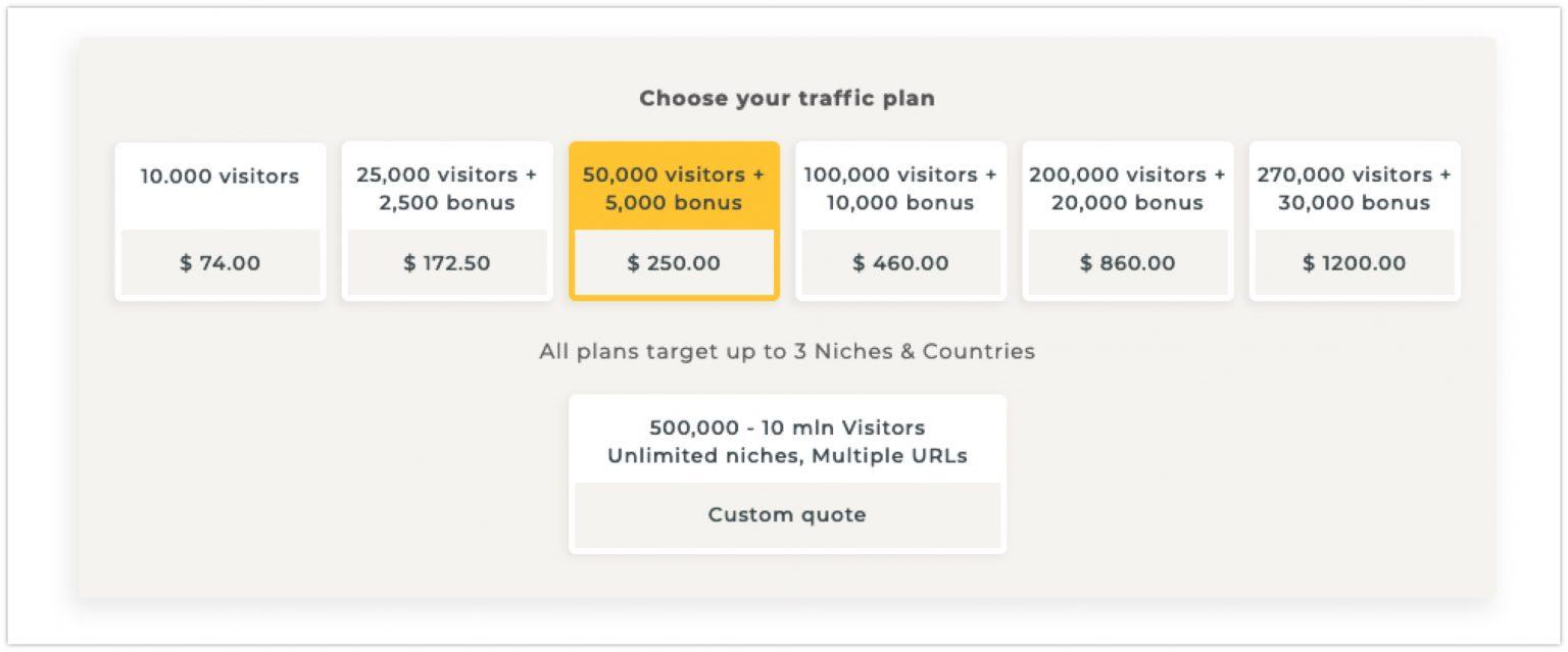 Website Traffic Plans WebTrafficGeeks